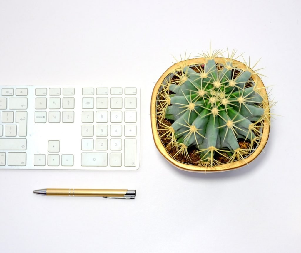 A gold pen, a bright yellow cactus, and a white keyboard on a white desk.