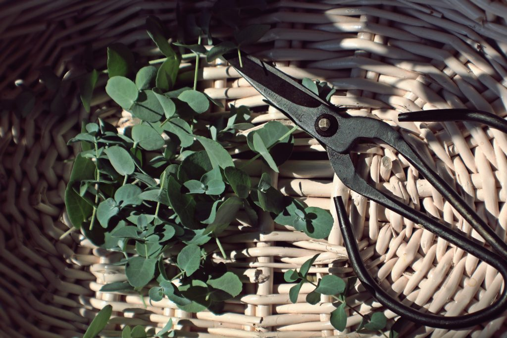 More productivity isn't going to help you if you don't know why you want to use scissors.