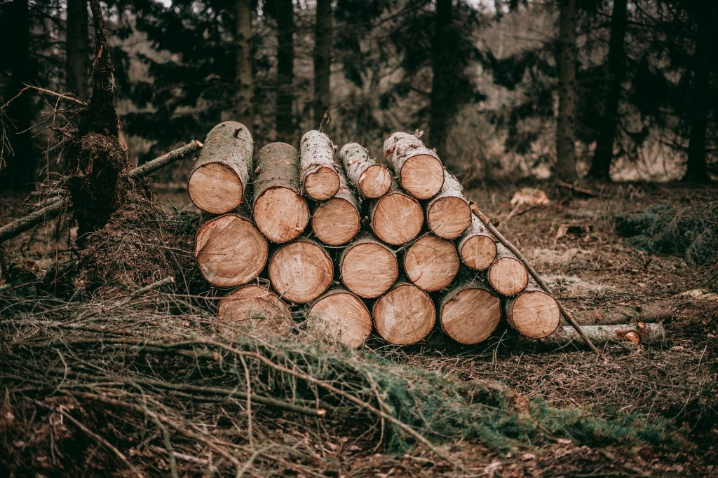 A pile of logs.