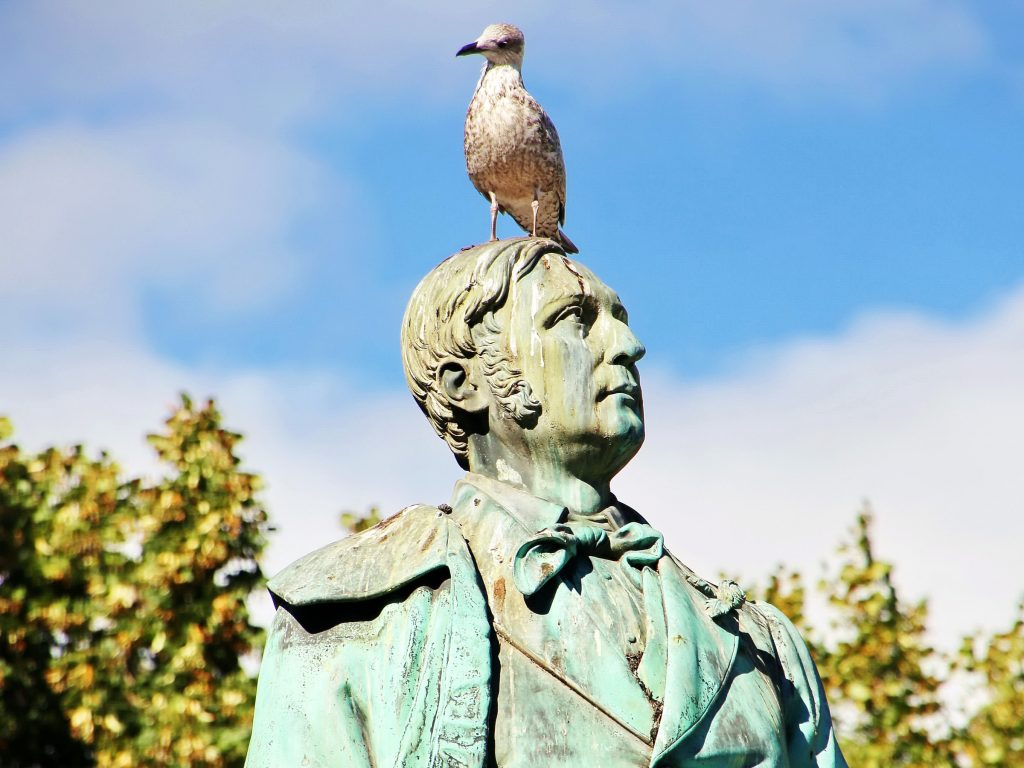 A statue with bird poop (and a bird) on it.